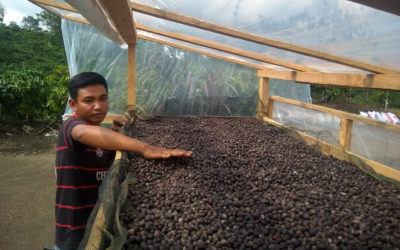 An innovative young farmer with a passion for improving coffee cultivation